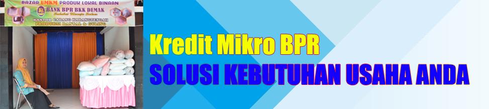 Kredit Mikro BPR BKK